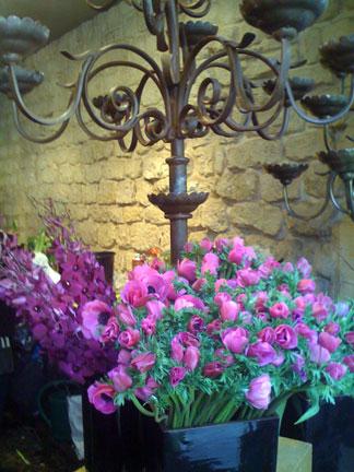 FLOWERS-RUE-RICHELIEU-7