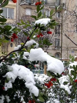 SNOW-WEEK3-31