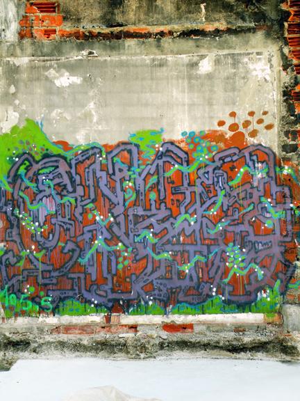 PUCE GRAF-10