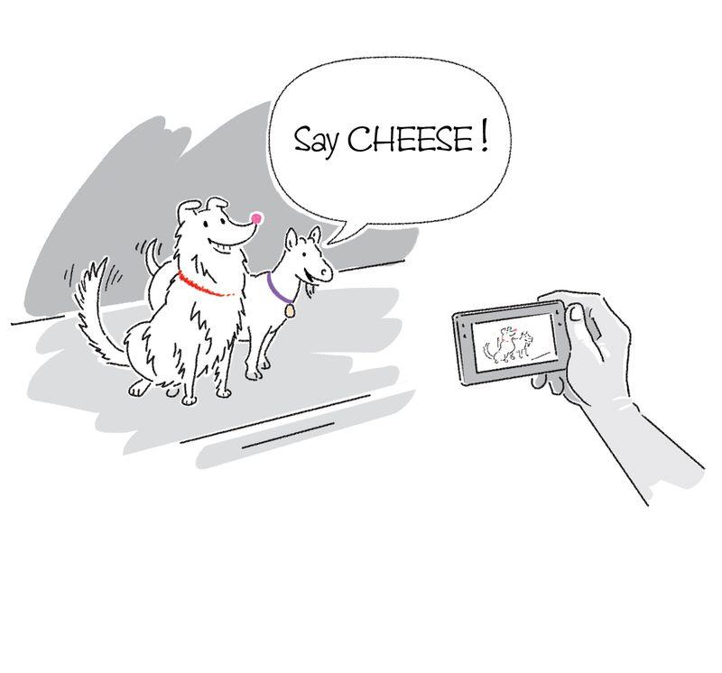 Chula & Goat 027