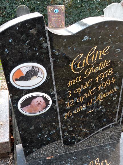 I Prefer Paris Paris Dog Cemetery Le Cimeti 232 Re Des