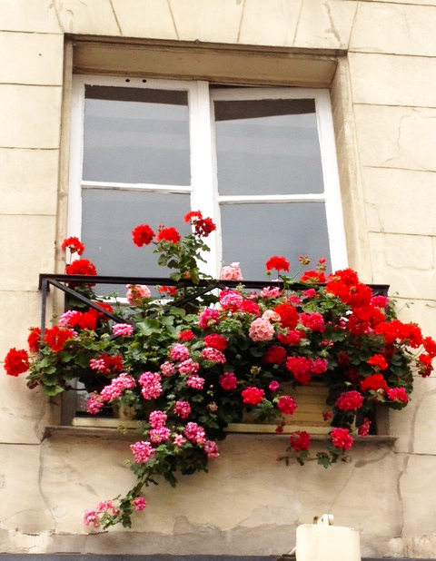 WINDOWBOXES3-8