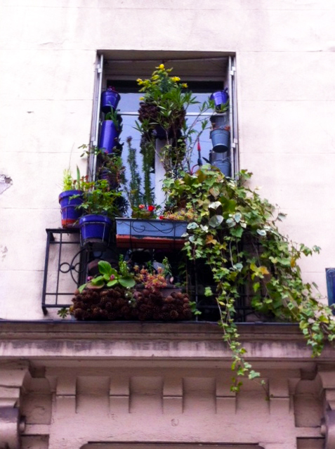 WINDOWBOXES13-7