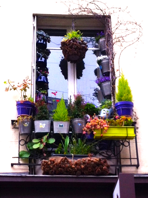 WINDOWBOXES13-6
