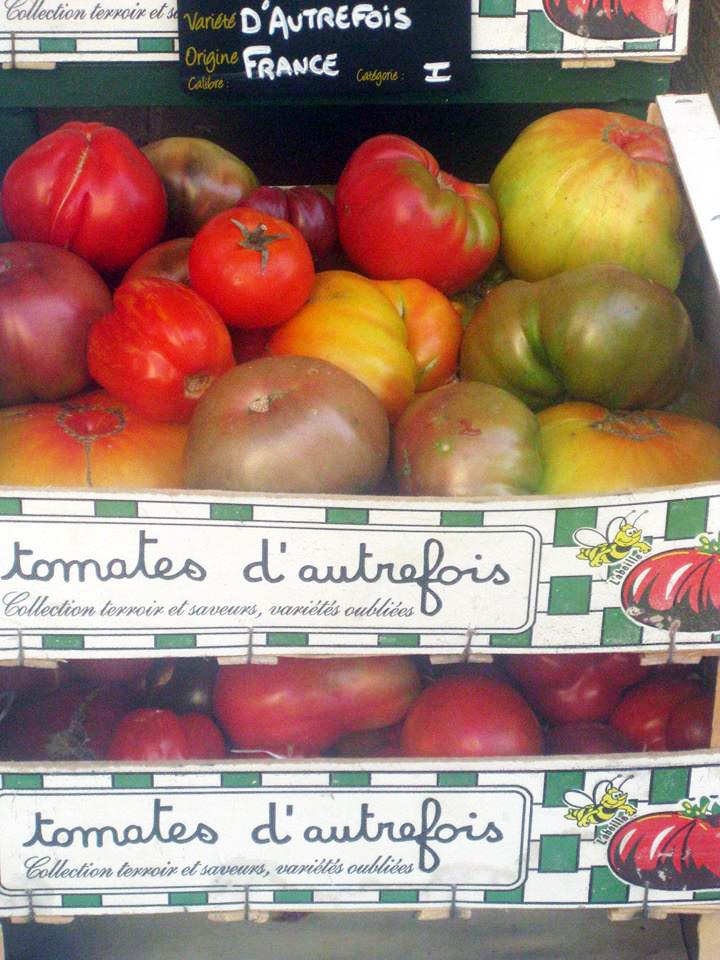 Tomates d'Autrefois