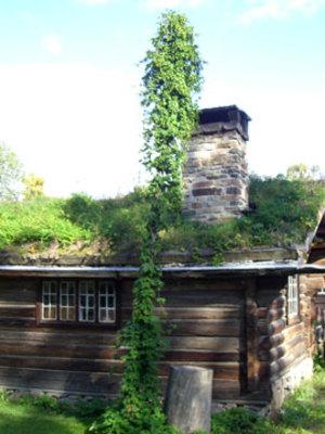 Oslo6